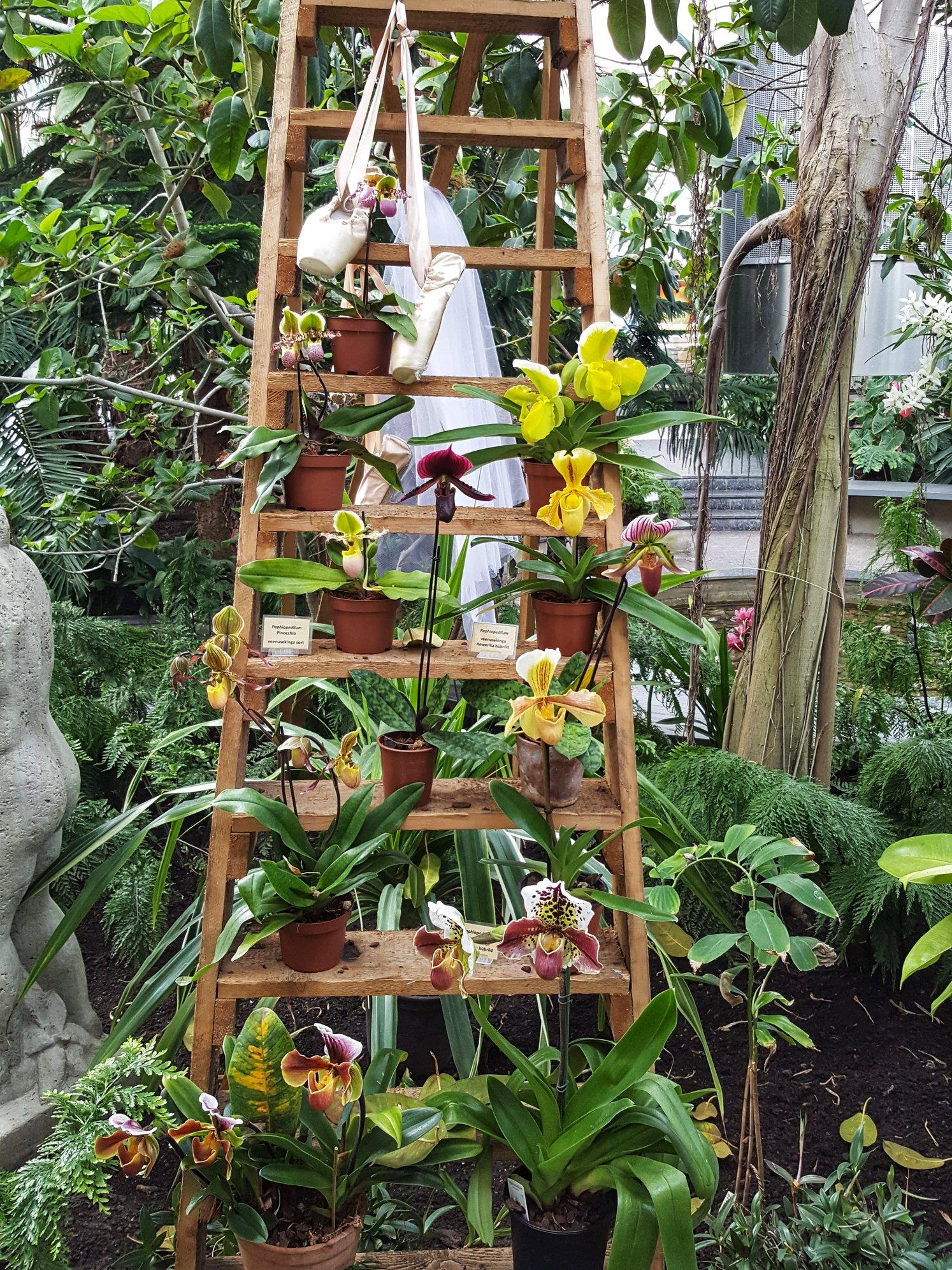 Outlandish Blog Best thing happened to me this week Botanic Garden Tallinn