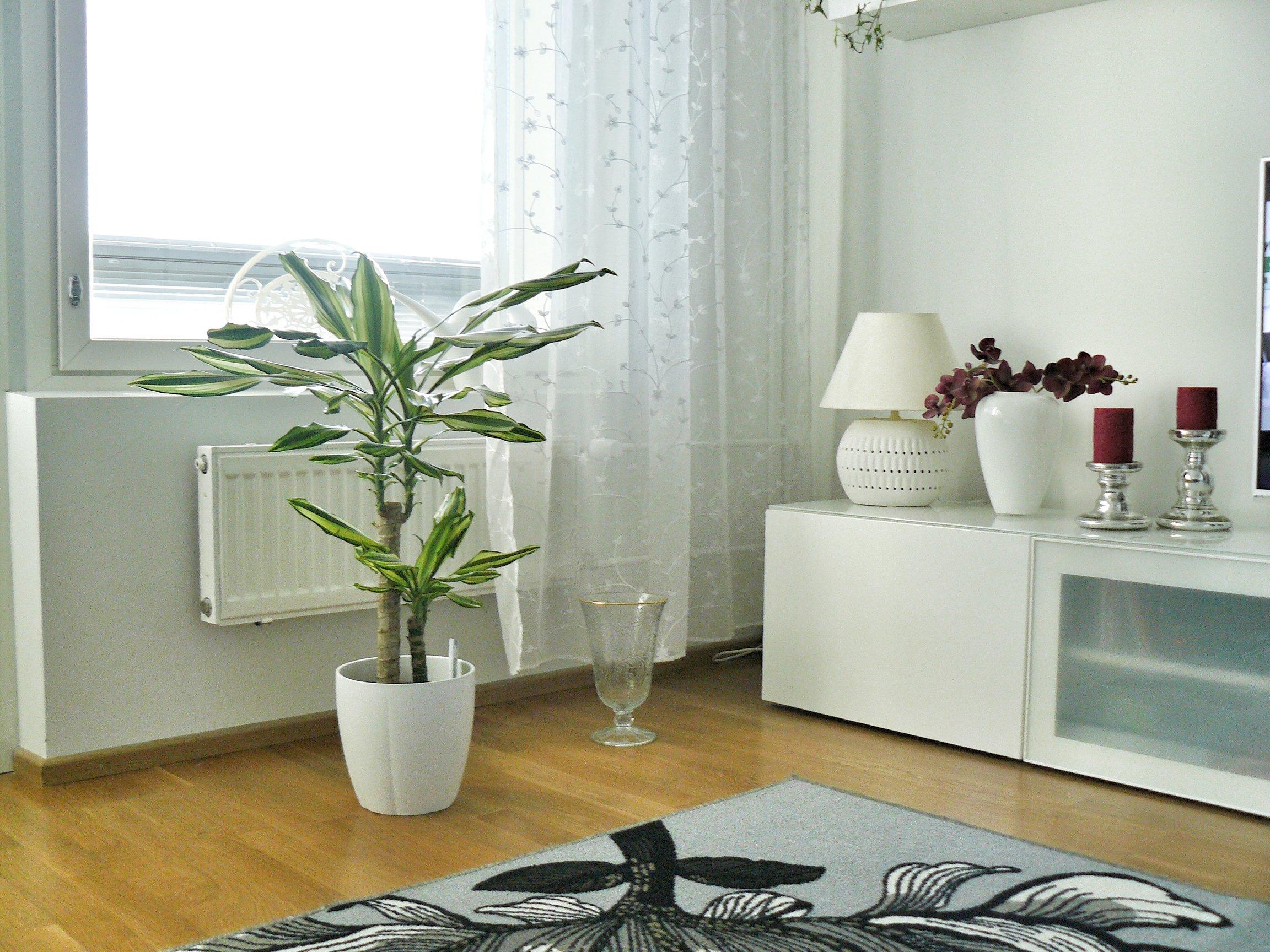 outlandish interior design details Scandinavian