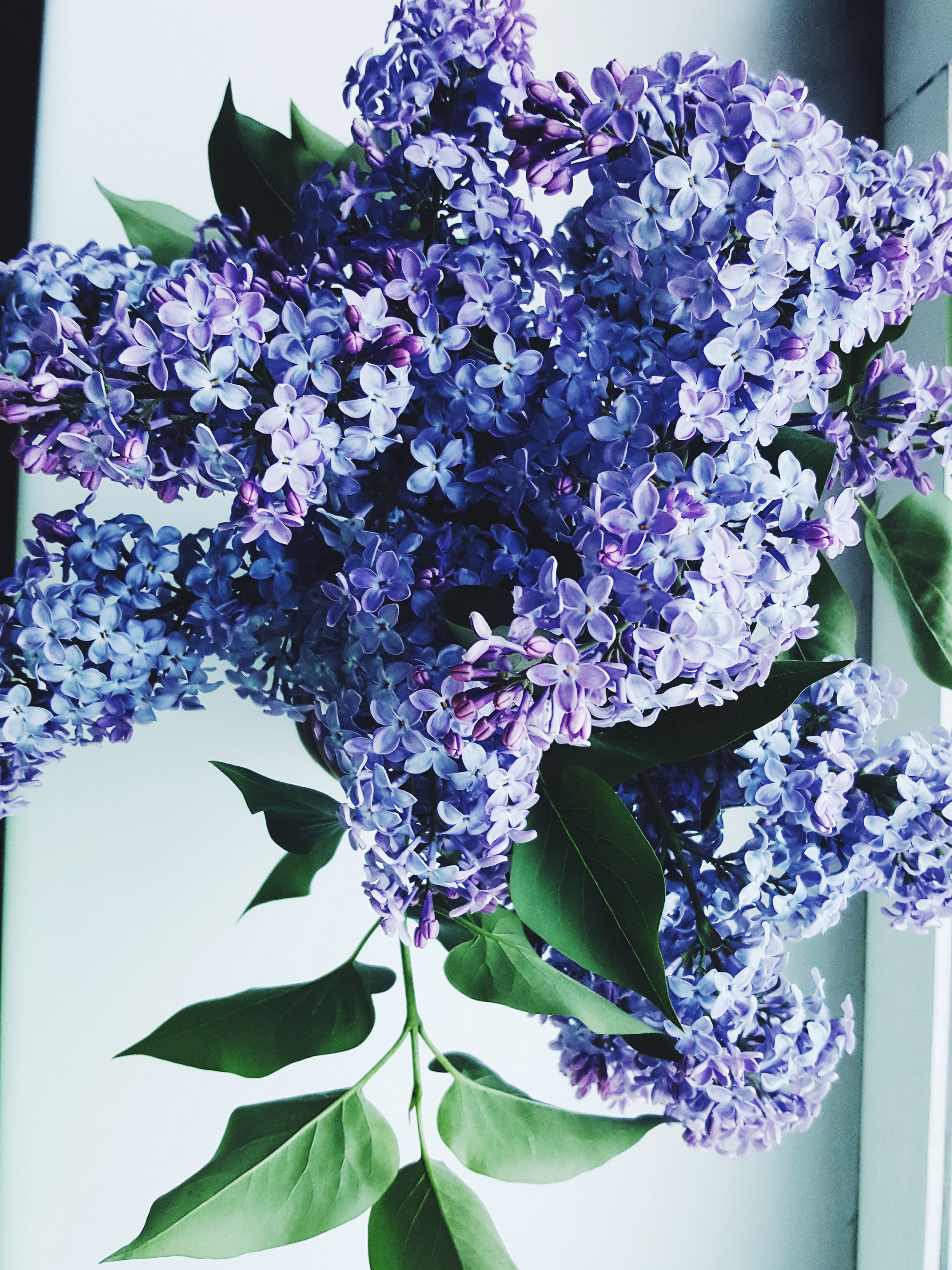 Outlandish blog how to make relationship work lilac