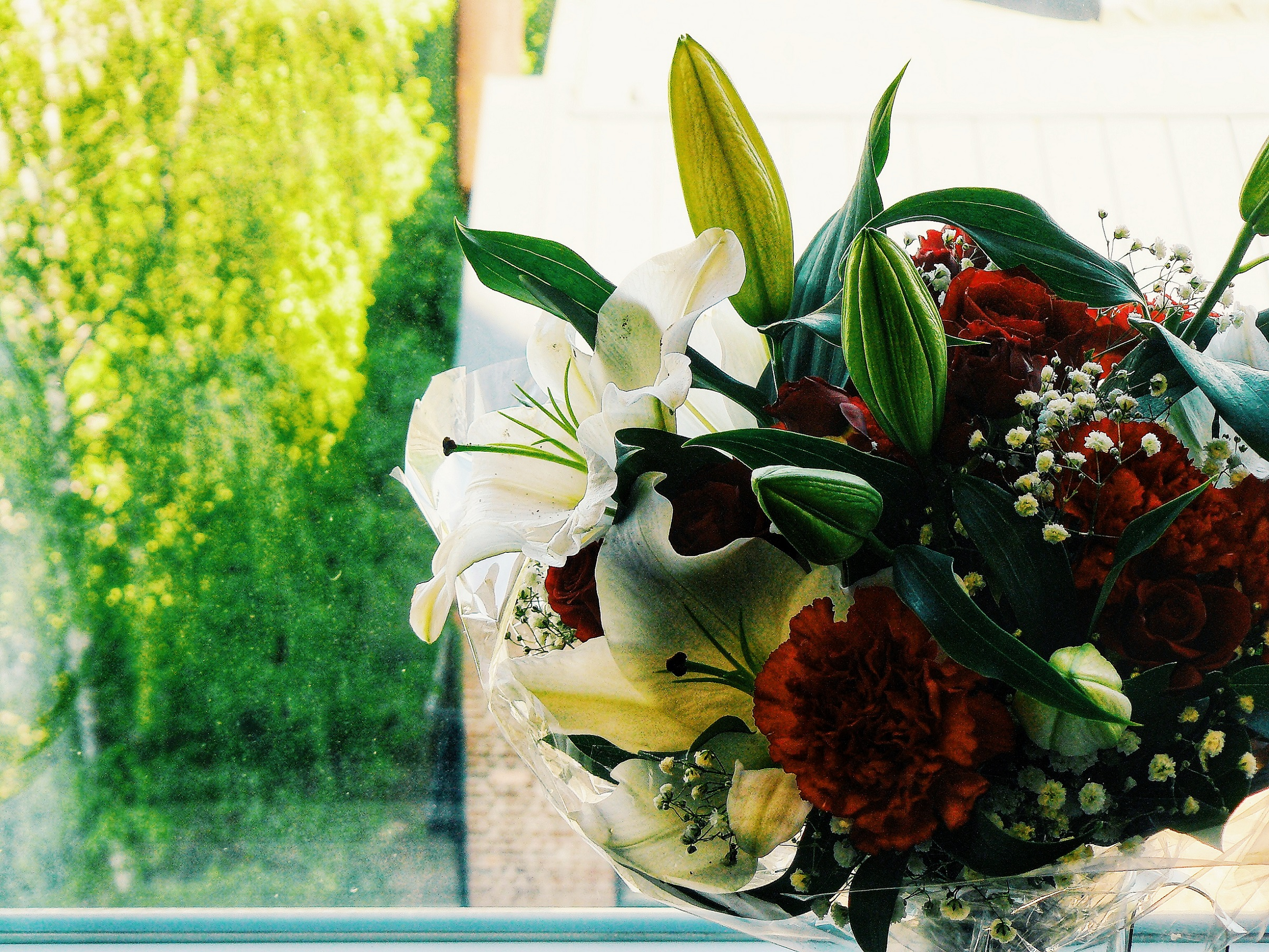 Outlandish blog flowers showing affection love