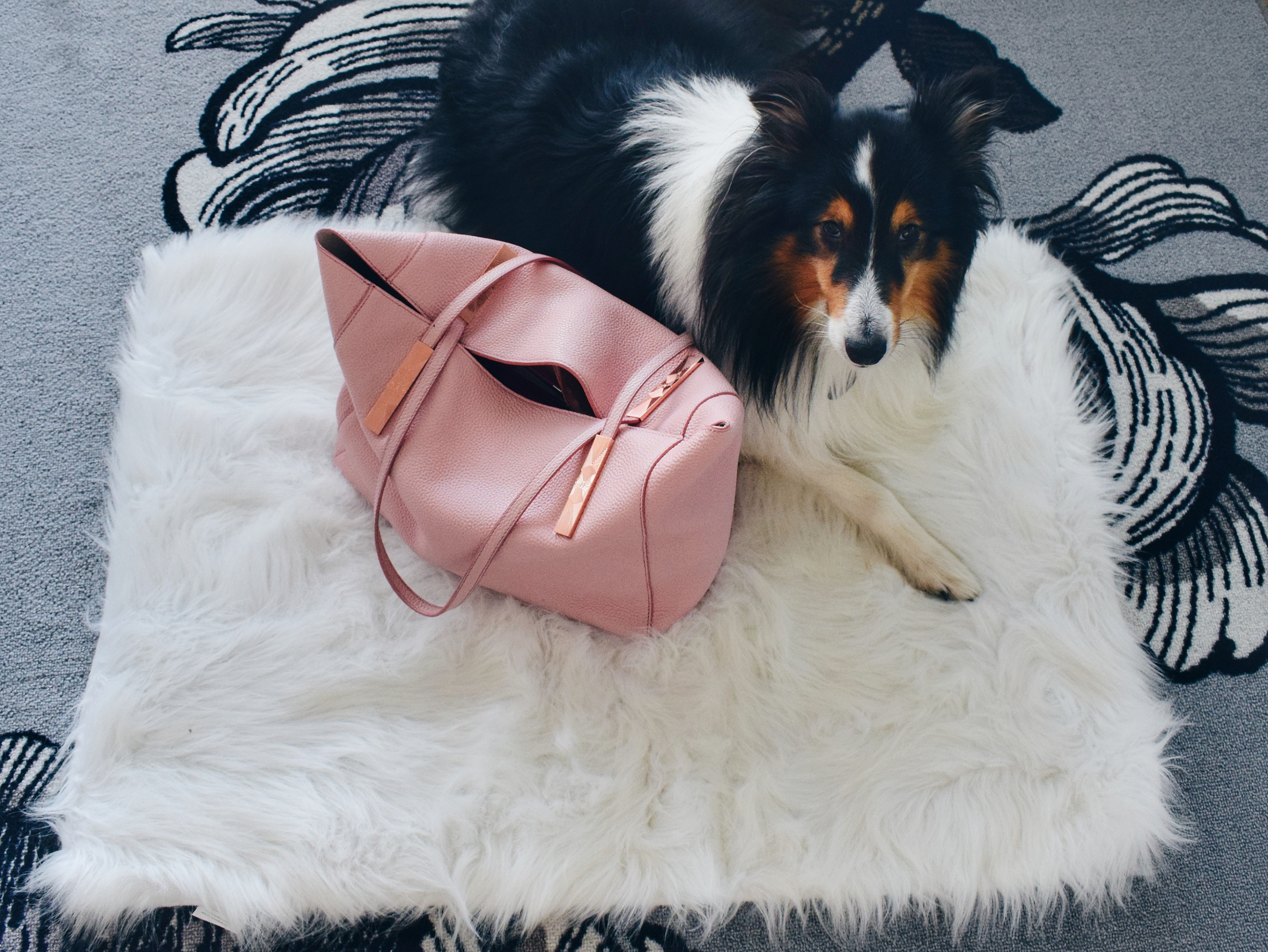 Outlandish blog daily essentials Ted Baker bag Chopard sunglasses make-up