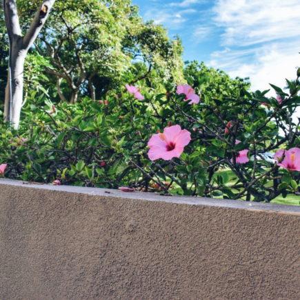 Hotel review Andaz Resort Maui