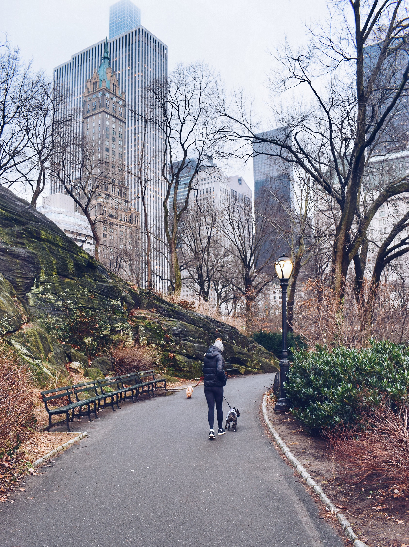 New York Photo Diary travel