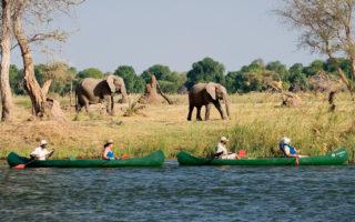 Volunteering in Zimbabwe